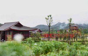 Hinoki Land
